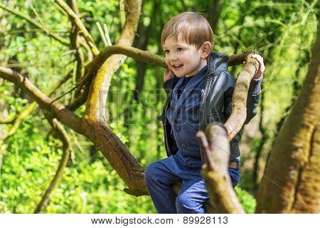 Little Boy Climbing Trees