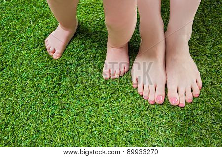 Mother and baby legs standing  on grass