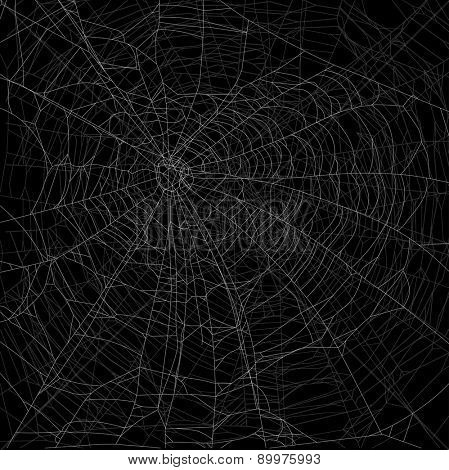 illustration with spider webs isolated on black background