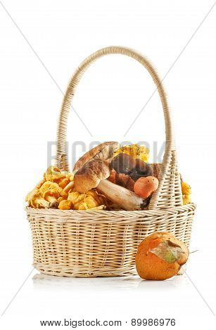 Assorted Mushrooms In A Basket On A White Background
