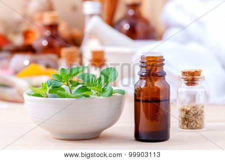 Natural Spa Ingredients Essential Oil With Oregano Leaves For Aromatherapy Setup On Spa Ingredients