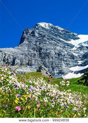 Eiger Switzerland. One of amazing mountain peaks in Berner Oberland part of European Alps main landmark of Swiss Confederation