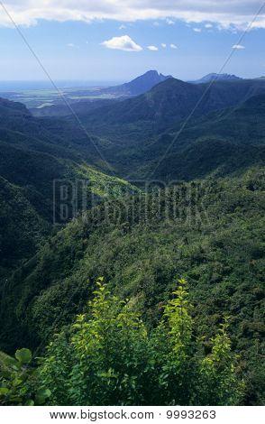 Black River Gorge Mauritius Island