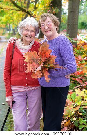 Smiling Senior Ladies Holding Autumn Leaves.