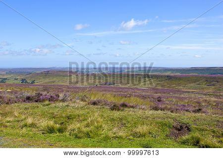 Rugged Moorland Terrain