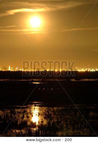 Moonlit Cityscape