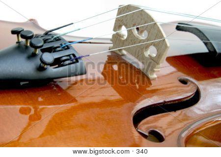 Violin F-holes, Bridge, Fine Tuners