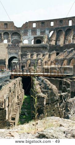 Coliseum From Inside