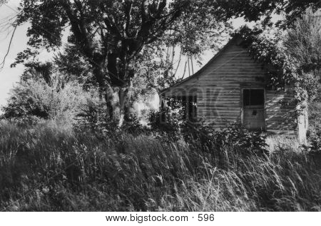 Old abandoned house, rural woods, old house, black and white house poster