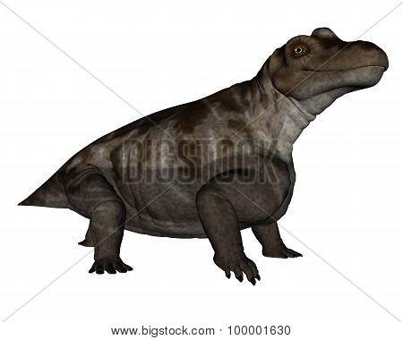 Keratocephalus dinosaur - 3D render