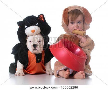 feeding confusion - child dressed like a dog and dog dressed like a cat
