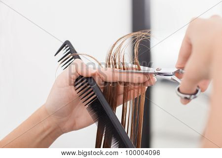 Skilled young hairstylist is making a haircut to her customer
