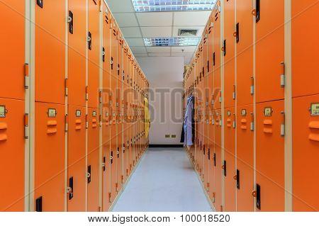 Two rows locker room in sport center.