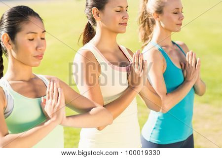 Peaceful sporty women doing yoga together in parkland