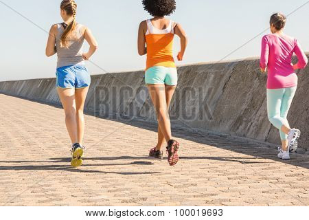 Rear view of sporty women jogging together at promenade