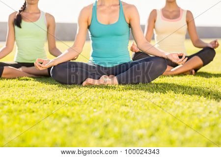 Sporty women doing yoga together in parkland