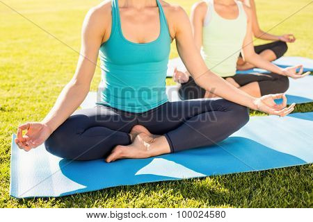 Sporty women meditating on exercise mats in parkland