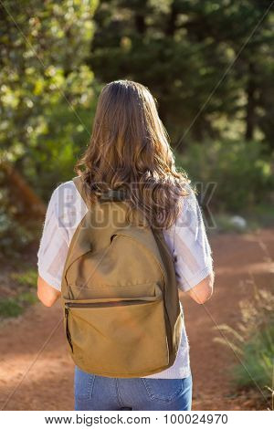 Brunette hiker hiking on path in the nature