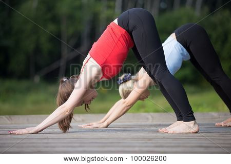 Yoga Class: Downward Facing Dog Pose