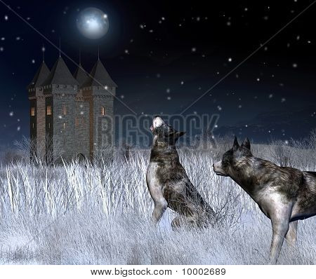 Lonely Castle in Winter Moonlight