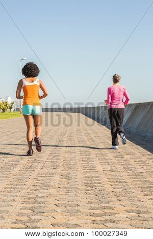Two sporty women jogging together at promenade