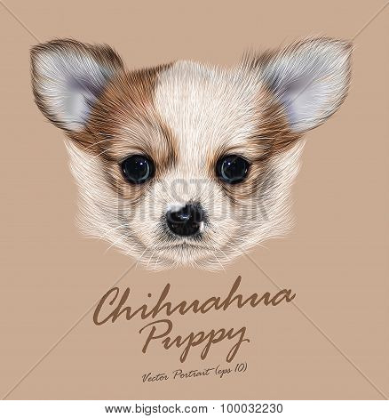 Vector Illustrative Portrait of Chihuahua Puppy