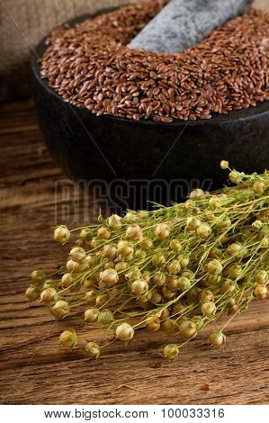Harvested Flax In Front Of Marble Mortar