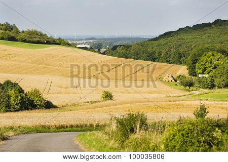Hills And Golden Fields
