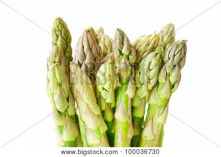 Green Asparagus On White