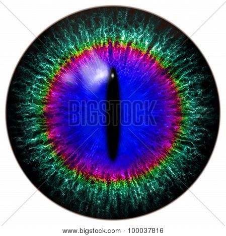 Green-blue Alien, Predator Or Cat, Reptile Eye With Narrow Pupil And Rainbow Circle Around It