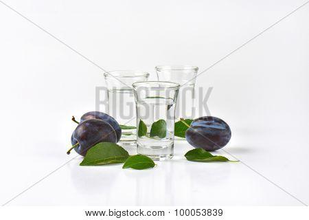 close up of slivovitz (plum brandy) and fresh plums on white background