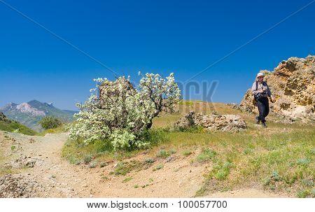 Lonely hiker walks through Kara-dag natural reserve