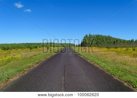 Rural Asphalt Road That Goes Into The Woods And Passing Through A Meadow
