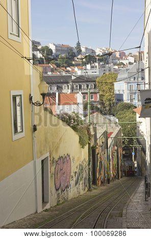 Lavra Street In Lisbon