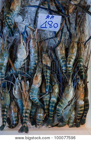 Giant Freshwater Prawn For Sale At Fresh Food Market, Thailand.
