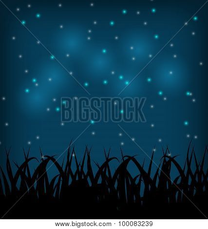Night sky with grass field