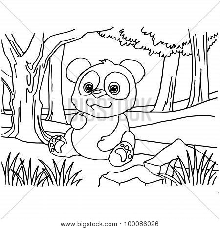 Giant panda coloring pages vector