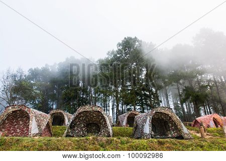 The Winter Fog