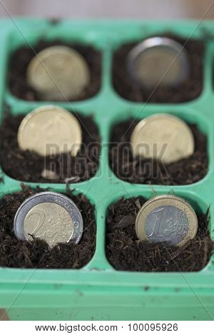 coins in the ground