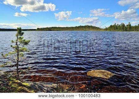Karelian Landscape. Lake Pongoma, North Karelia, Russia