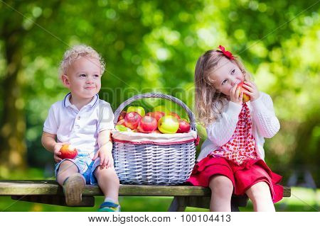 Kids Picking Fresh Apples