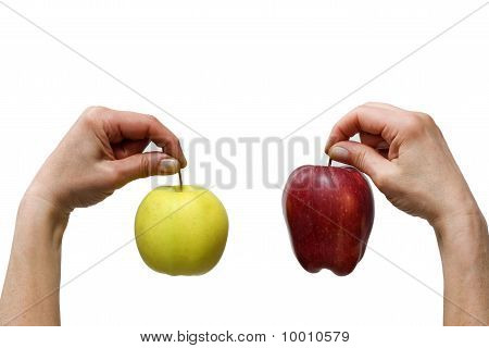hands holding a yellow and a red apple isolated on white background