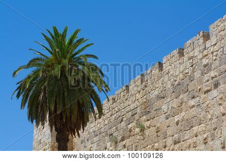 Wall Of Jerusalem