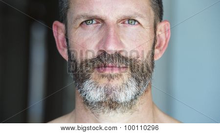 Portrait Of A Man With Beard