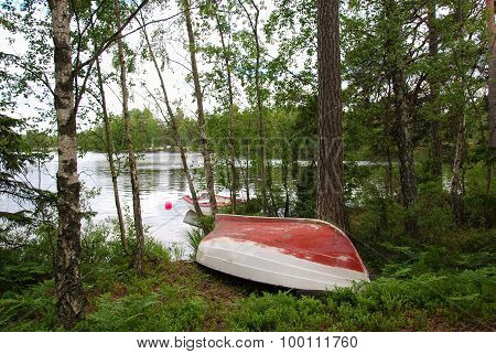 Rowing Boats At Calm Bay