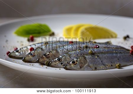 Fresh Sprats Fish