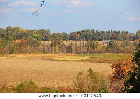 Autumn landscape #2