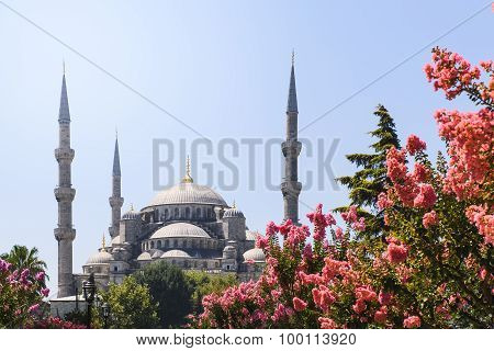 View of the Blue Mosque Sultanahmet Camii in Istanbul, Turkey