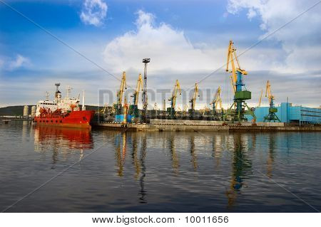Croup Of Cranes In Sea Port
