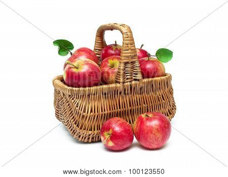 Basket With Ripe Red Apples Isolated On White Background